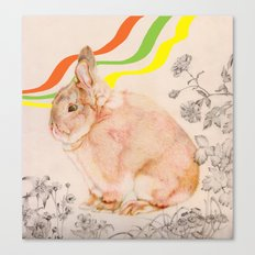 Dedicated to all those bunnies out there Canvas Print