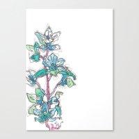 Calahan's Orchids Canvas Print