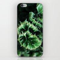 Emerald Green Cactus Bot… iPhone & iPod Skin