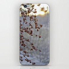 Dauntless iPhone & iPod Skin