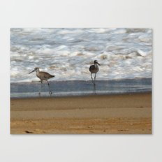 Rough waters Canvas Print