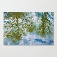 TREE-FLECTS Canvas Print