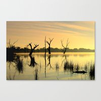 Nature's Beauty Canvas Print