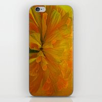 Bursting iPhone & iPod Skin