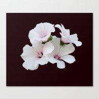 Beautiful summerflowers Canvas Print