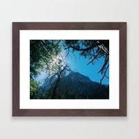 ZMT Framed Art Print