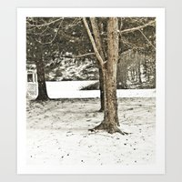 Snow In The Trees Art Print