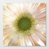 Happy Spring Canvas Print