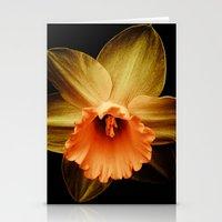 Daffodil 2 Stationery Cards