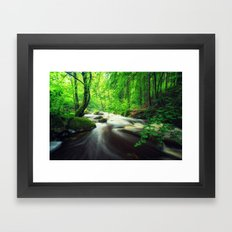 A River through the Forest Framed Art Print