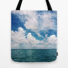 Mosquito Reef Tote Bag