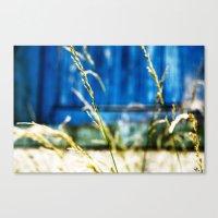 Urban Wild Grass Canvas Print