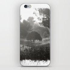 Foggy Path iPhone & iPod Skin