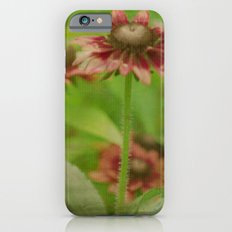 Walk Right Up iPhone 6 Slim Case