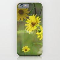 Yellow Flower Field iPhone 6 Slim Case
