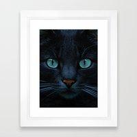 Eyes Of Blue Framed Art Print