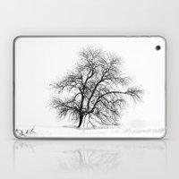 Winter White Laptop & iPad Skin