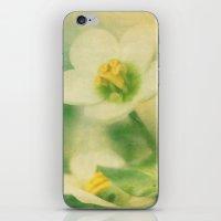Simply Nice iPhone & iPod Skin