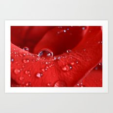 Catching Water Drops Art Print