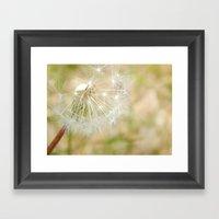 Dandilion Framed Art Print