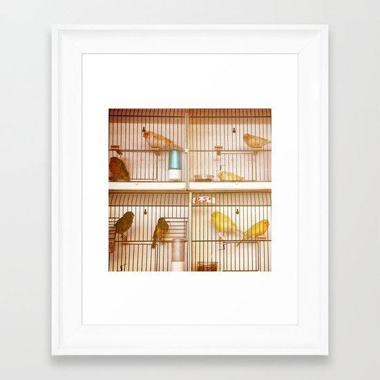 Marche Aux Oiseaux 2 Framed Art Print