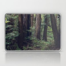 The Redwoods at Muir Woods Laptop & iPad Skin
