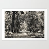 Angkor Vat Path Art Print