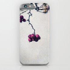 Bacche iPhone 6 Slim Case