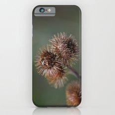 Piri Piri Burr iPhone 6 Slim Case