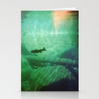 Trout Stationery Cards