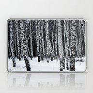 Birch Trees Laptop & iPad Skin