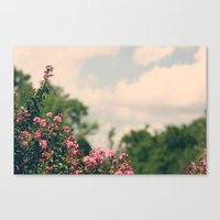 Soft Hues III Canvas Print