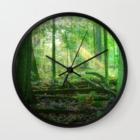 Devil's Lake State Park Wall Clock