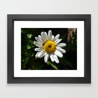 Little One Framed Art Print