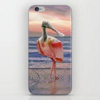 Beachcombing iPhone & iPod Skin