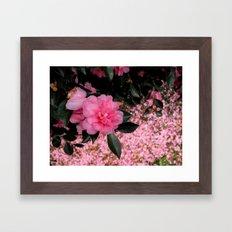 A sea of petals Framed Art Print