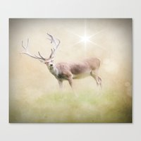 The Wild Stag Canvas Print