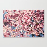 Painting the Town Pink Canvas Print