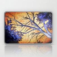 Enchanted Forest Laptop & iPad Skin