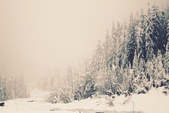 When it is winter, it snows.  Art Print