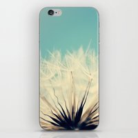 She's A Firecracker iPhone & iPod Skin