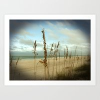 Morning sea oats Art Print