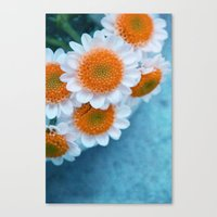 Summer In Orange Canvas Print