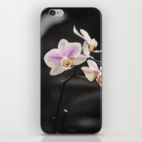 Orchid Dance iPhone & iPod Skin