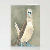 blue footed booby Stationery Cards