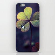 Heart-shaped Fairy iPhone & iPod Skin