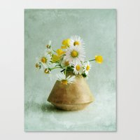 Daisies And Buttercups Canvas Print
