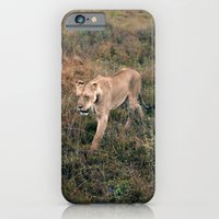 iPhone & iPod Case featuring Lone Lion. by Will Hill