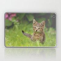 Little Tiger in Gras Laptop & iPad Skin