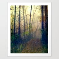 Wandering In A Foggy Woo… Art Print